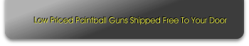 Low Priced Paintball Guns Shipped Free To Your Door